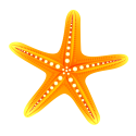 Starfish for ALT Insurance Group